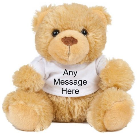 Teddy Bear With Any Message